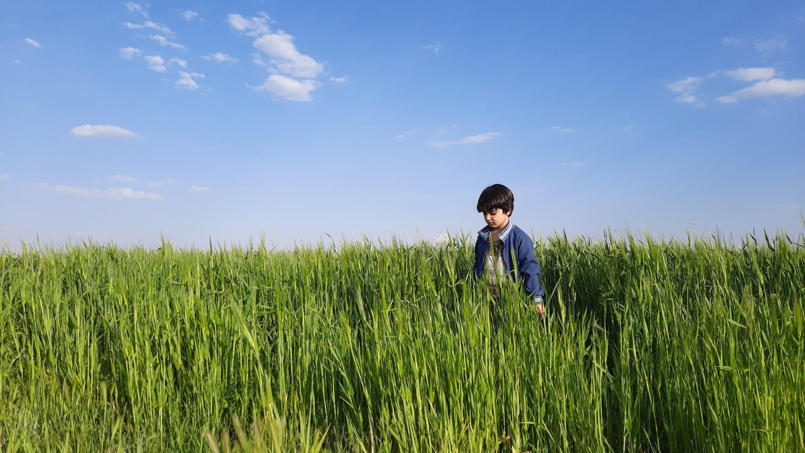 Ces 3 intervenants veulent mettre fin au travail des enfants en agriculture